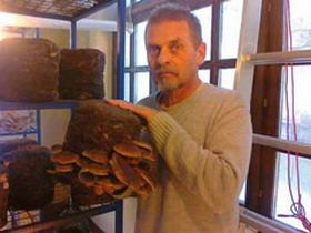 Iskustvo i strpljenje za šitake i reiši gljive