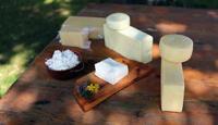 Zdravi mlečni proizvodi sa padina Čemernika